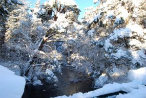 Glenmore Park 2010 13 by CitizenJustin