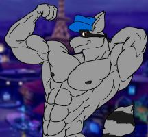 Sly Cooper by WolfoxOkamichan