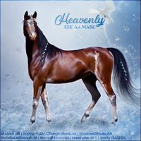 Horse Avatar ~ Heavenly by Liberty-Designs