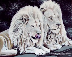 The Lions by Olvium