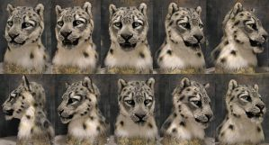 Snow leopard For sale at end of year! by Crystumes