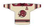 Phoenix Coyotes Jersey Concept by PD-Black-Dragon