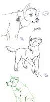 Doodle Dump -Banner dog and Co.- by KigerwolfRD