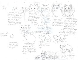 How to Draw a Cat by Porcubird