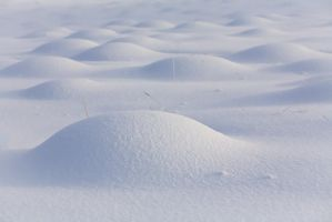 White curves... by vincentfavre