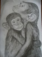Monkeys by Perfectly--Unperfect