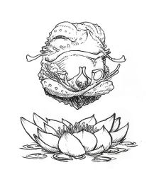 02-Lotus Blossom Frog by butterfrog