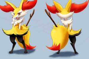 Braixen Front-Back Practice by Definisher