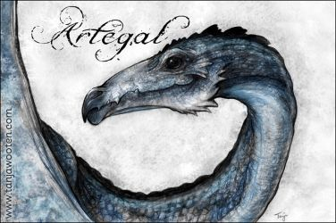 Artegal by tygriffin
