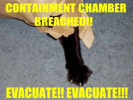 CONTAINMENT BREACH!!! by Pirkleations