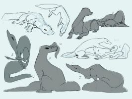 YCH Commissions 1! (Open to Esk + All Quadrupeds) by ShamelessMagic