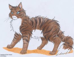Warrior Cats: Hawkfrost by Jalohauki
