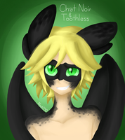 Chat Noir/Toothless by FrostSentry150