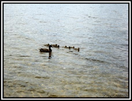 A Mother and Her Children II by KillerRabbit04776