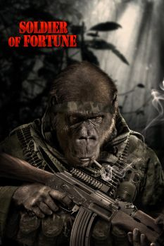 soldier of fortune by StanOd