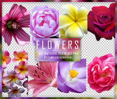 Natural Flowers Png by camiladearmas481