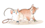 Rats And Mice by MikaelHankonen