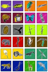 Biomimicry Cards by yii