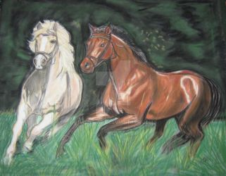 two horses by fauna-art