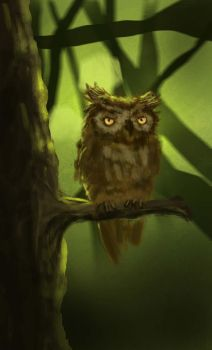 Daily Spitpaint 7: Topic: Wise One by RawConceptz