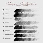 Canvas Collection - Photoshop Brush Pack by RadicalMadder