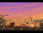 Summer skies and fireflies by Nollaig