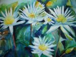 Water lilies 2 by p-e-a-k