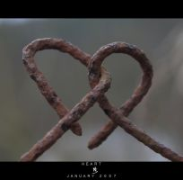 HEART by science10
