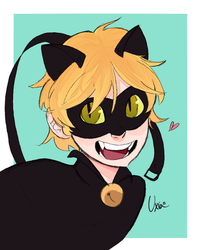 Chat Noir by Uxia15