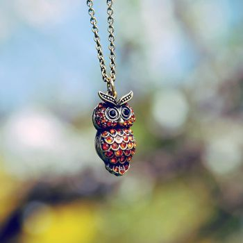 .: Owl :.. by BlueColoursOfNature