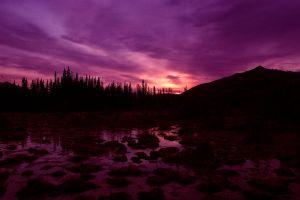 Mulberry Sky (Liard Hot Springs, Canada) by drewhoshkiw