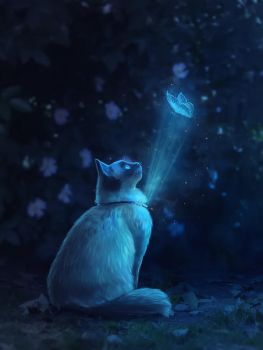 Magic cat by Ewoka