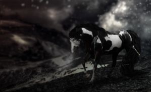THE BONE COLLECTOR by Befera