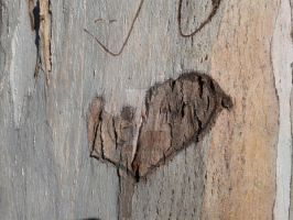 wood with Heart by blackroselover