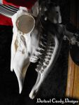 Contemplating Death and Religion - Deer Skull Lamp by DarkestCandyDesigns