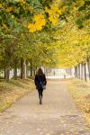 Walking in Autumn by nadril83