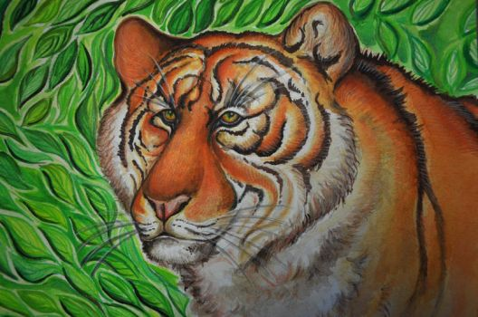 Tiger in jungle by Magizoom