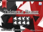 Triangle Brush by dreamswoman