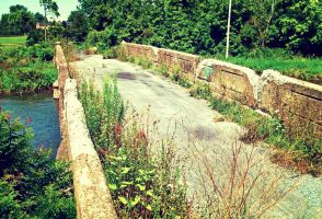 Old Stone Bridge: Plant Highway by TemariAtaje