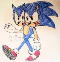 R: Sonic the Two-headed by JoeyB1001