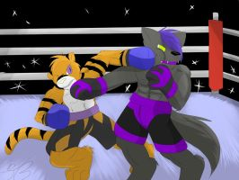 Boxing, modern vincent by ZWolfArt