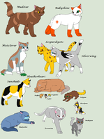 Adoptable Clan Cats 9/15 OPEN by skyclan199