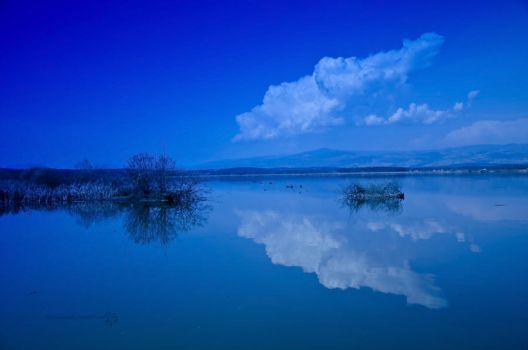 Dream In Blue by XanaduPhotography
