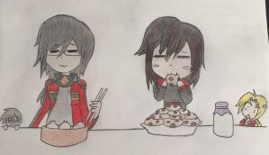 The Dumplings and the Cookies by SmashArtist728