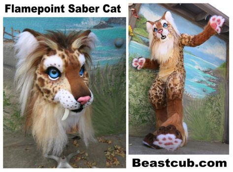 Flamepoint Saber Cat - new hairdo by LilleahWest