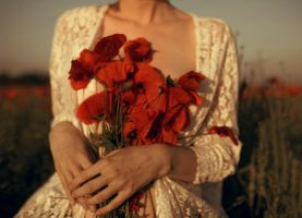 Poppies by fairyladyphotography
