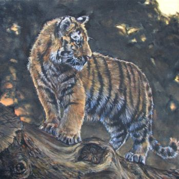 Tiger cub standing by Katie-Z
