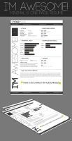 One Page Minimal Resume by KaixerGroup