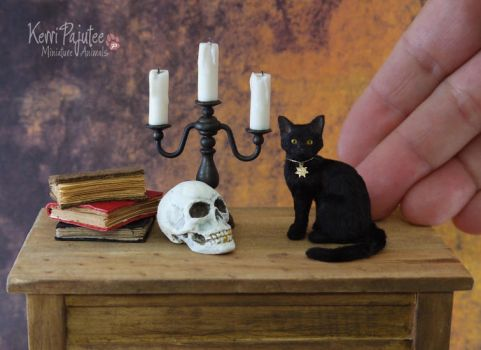 Miniature Black Cat and skull sculptures by Pajutee