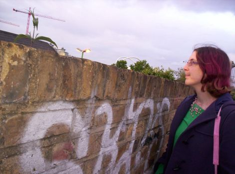 joey by the wall by Scieh